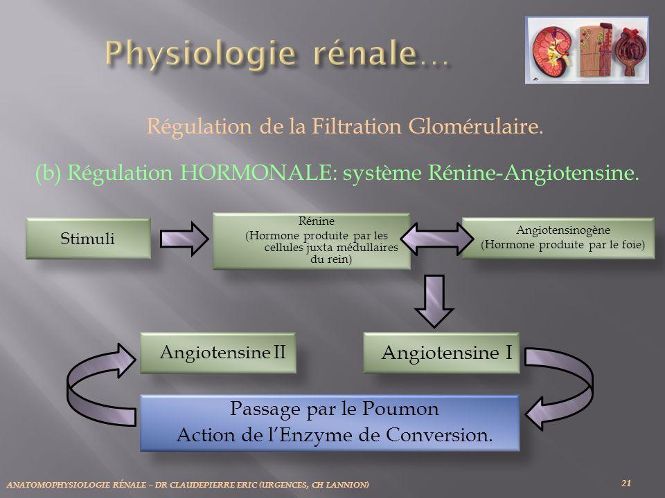 Physiologie rénale… Régulation de la Filtration Glomérulaire.