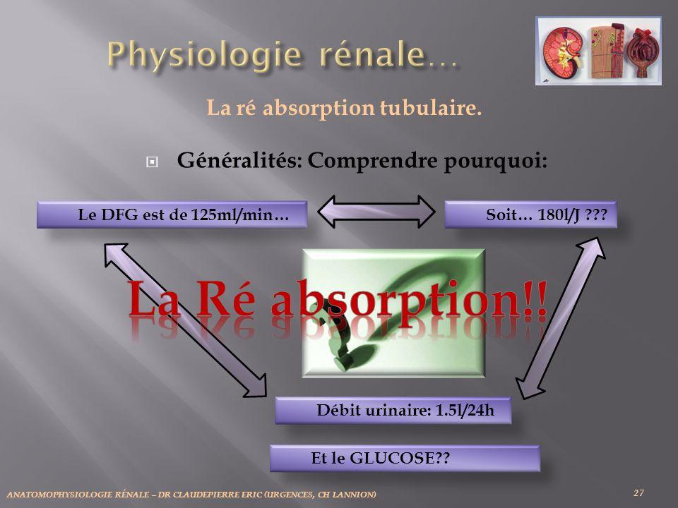 La ré absorption tubulaire. Généralités: Comprendre pourquoi: