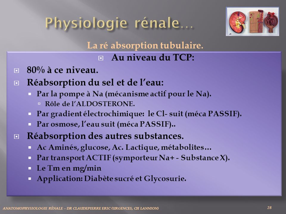 La ré absorption tubulaire.