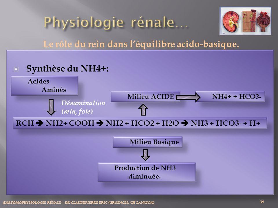 Le rôle du rein dans l'équilibre acido-basique.