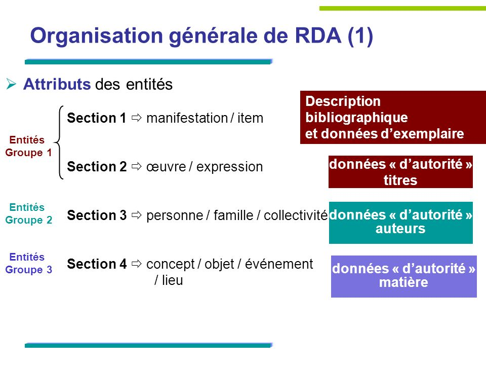 Organisation générale de RDA (1)