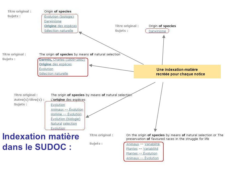 Indexation matière dans le SUDOC :