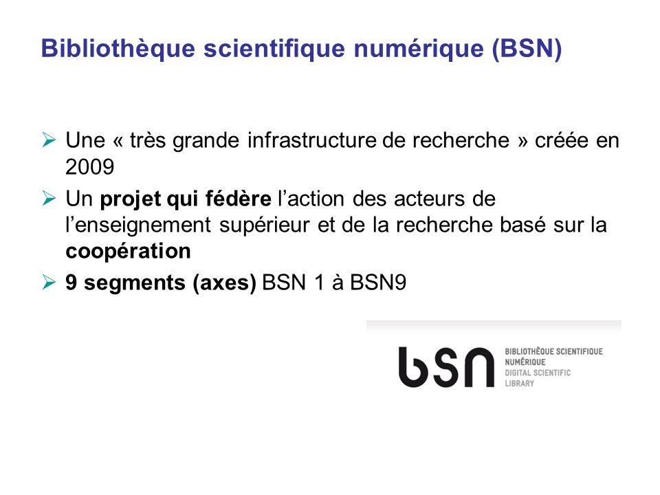 Bibliothèque scientifique numérique (BSN)