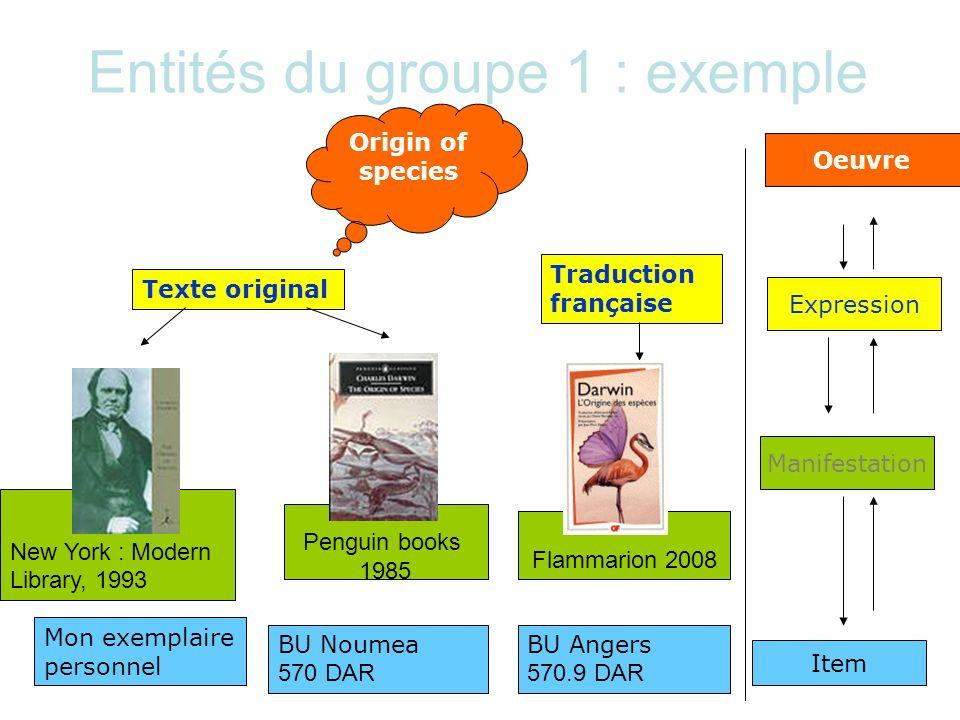 Entités du groupe 1 : exemple