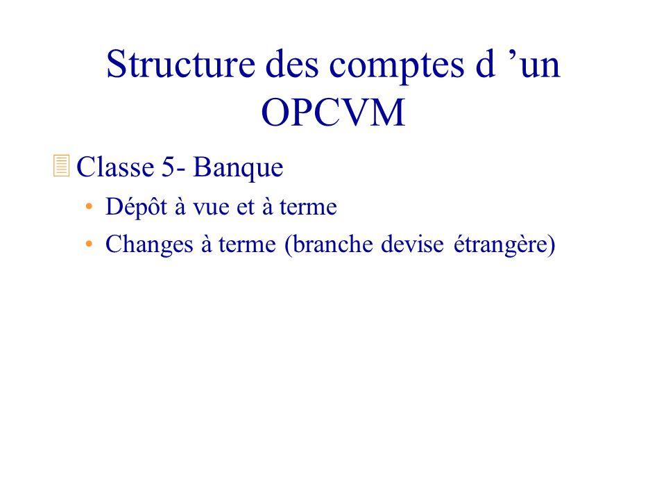 Structure des comptes d 'un OPCVM