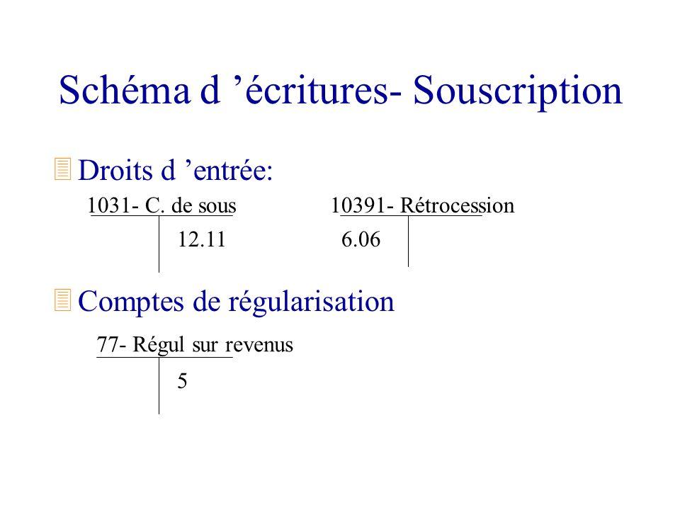 Schéma d 'écritures- Souscription