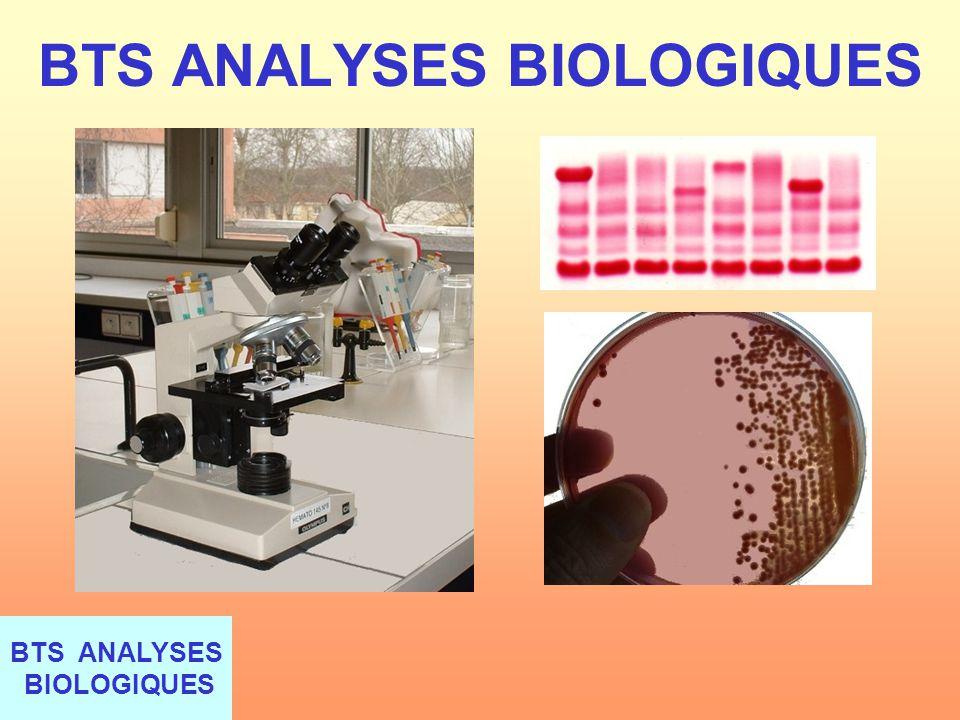 BTS ANALYSES BIOLOGIQUES