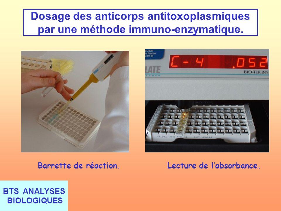 Dosage des anticorps antitoxoplasmiques par une méthode immuno-enzymatique.