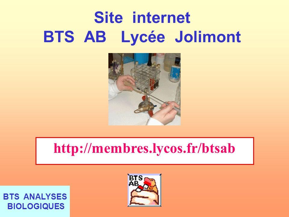 Site internet BTS AB Lycée Jolimont