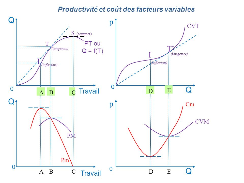Q p T' I I Q Q p Q Productivité et coût des facteurs variables Travail