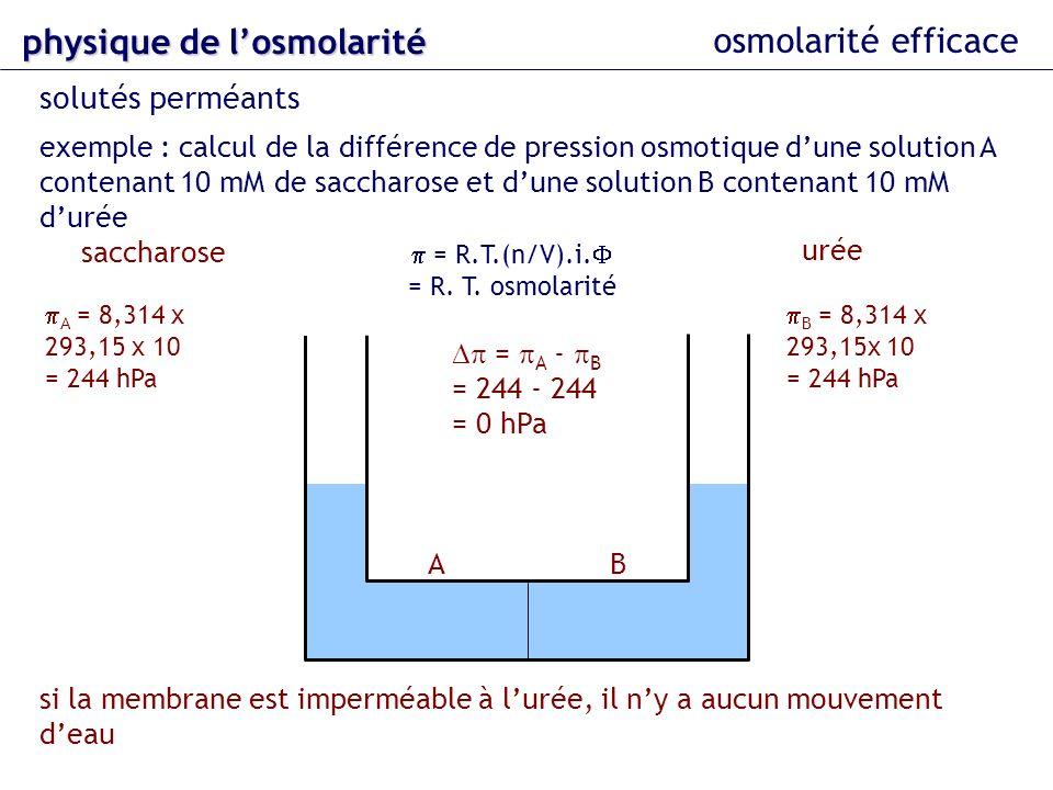 physique de l'osmolarité osmolarité efficace