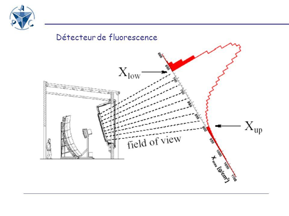 Détecteur de fluorescence