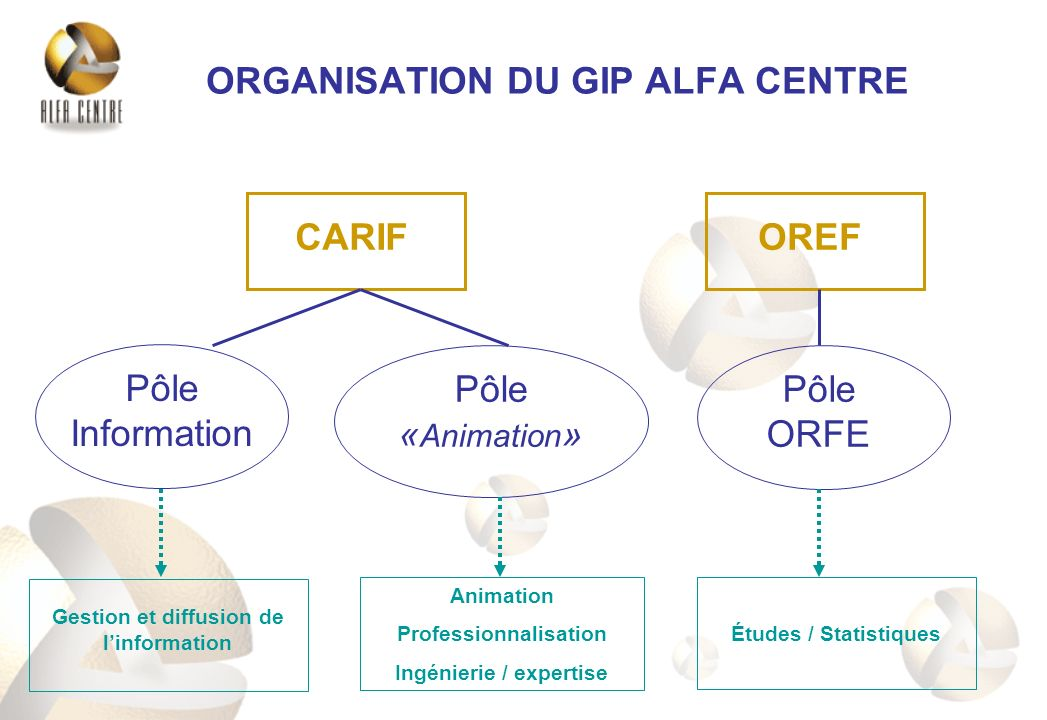 ORGANISATION DU GIP ALFA CENTRE