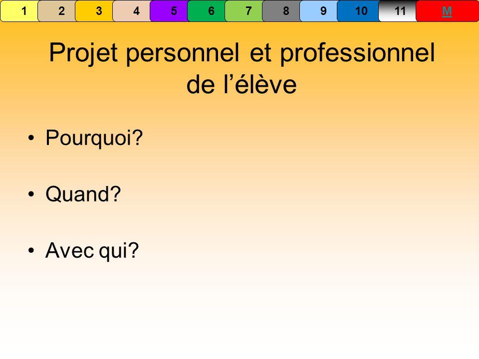 Projet personnel et professionnel de l'élève
