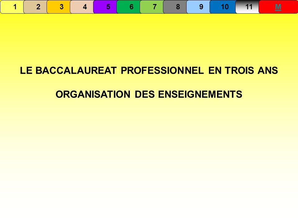 LE BACCALAUREAT PROFESSIONNEL EN TROIS ANS