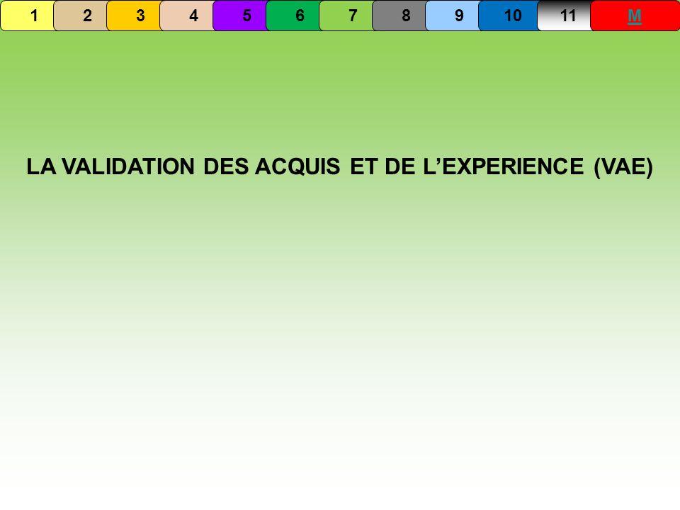 LA VALIDATION DES ACQUIS ET DE L'EXPERIENCE (VAE)