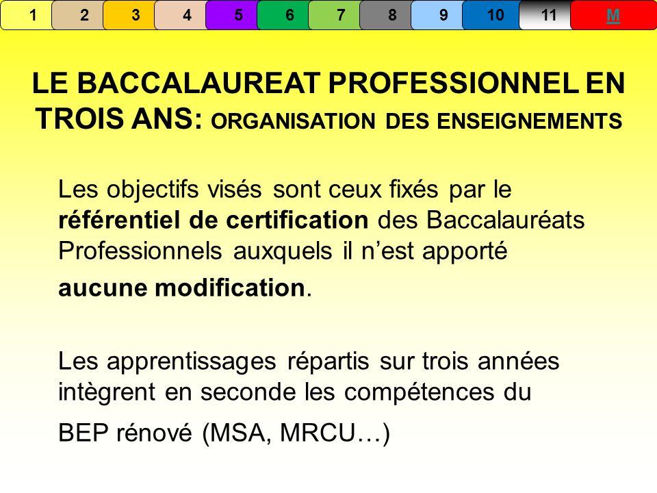 1 2. 3. 4. 5. 6. 7. 8. 9. 10. 11. M. LE BACCALAUREAT PROFESSIONNEL EN TROIS ANS: ORGANISATION DES ENSEIGNEMENTS.