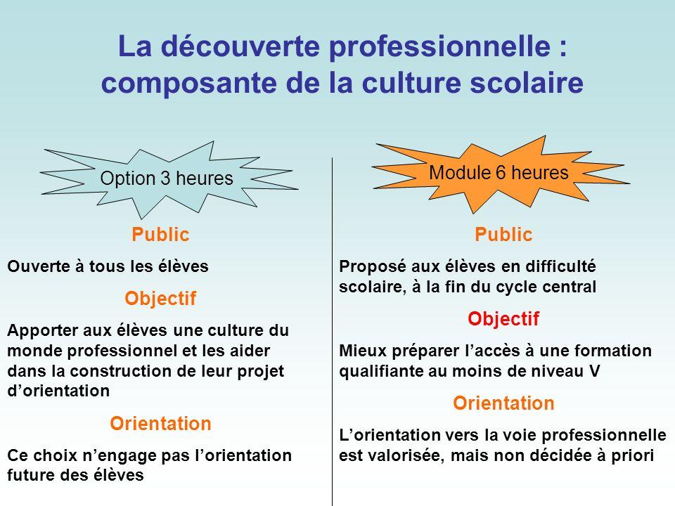 La découverte professionnelle : composante de la culture scolaire
