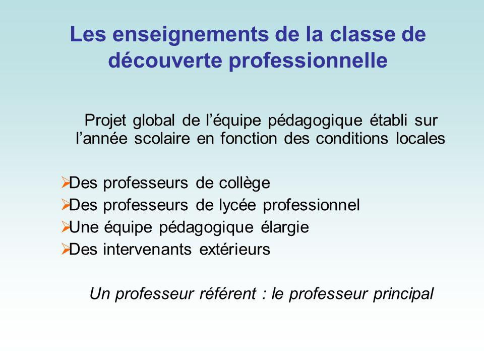 Les enseignements de la classe de découverte professionnelle