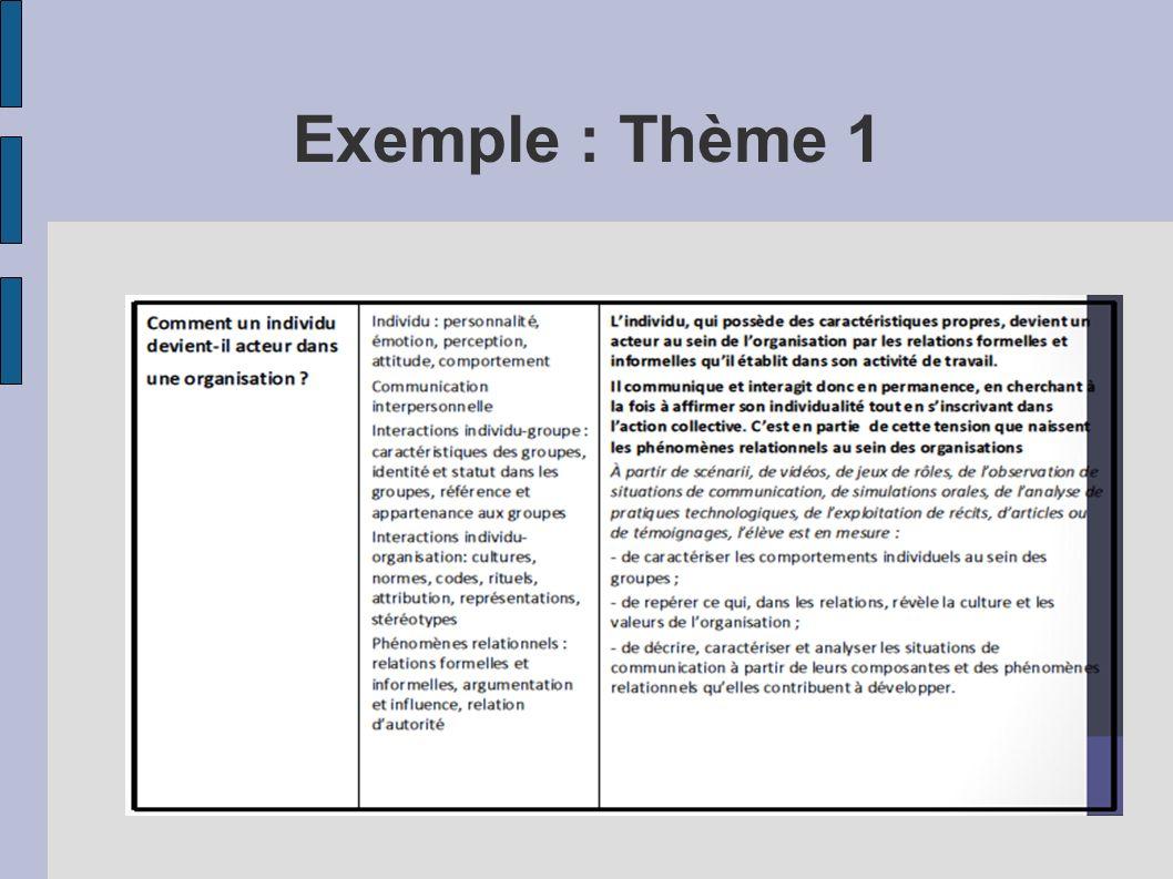 Exemple : Thème 1