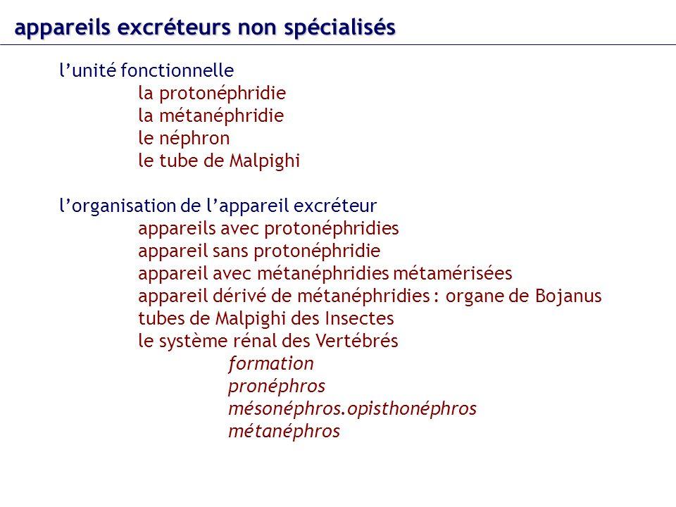 appareils excréteurs non spécialisés