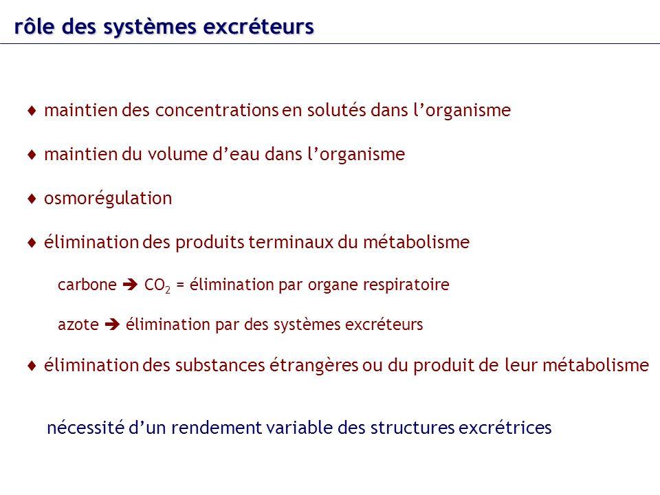 rôle des systèmes excréteurs