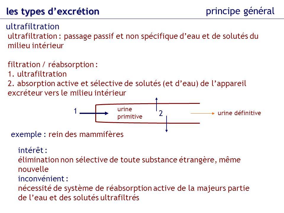 les types d'excrétion principe général ultrafiltration
