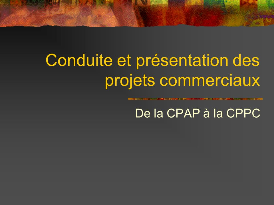 Conduite et présentation des projets commerciaux