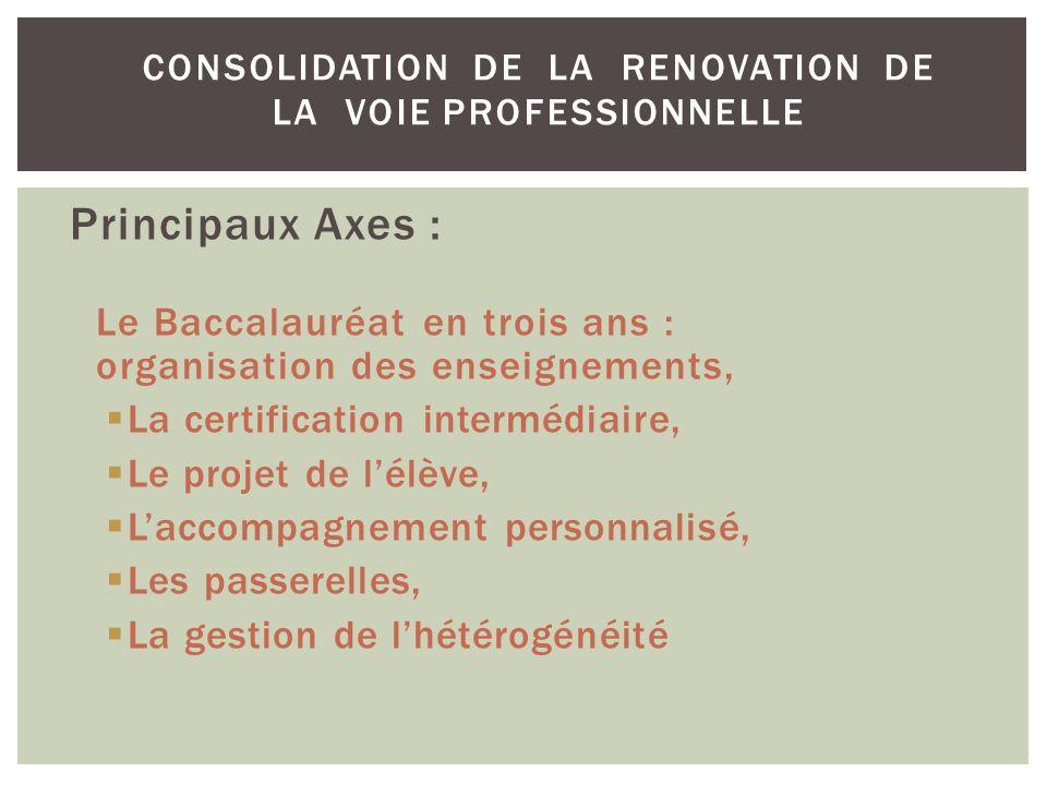 CONSOLIDATION DE LA RENOVATION DE LA VOIE PROFESSIONNELLE