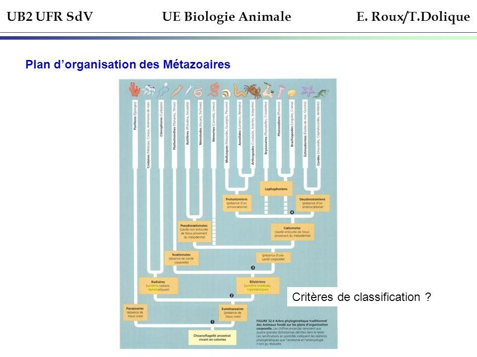 UB2 UFR SdV UE Biologie Animale E. Roux/T.Dolique
