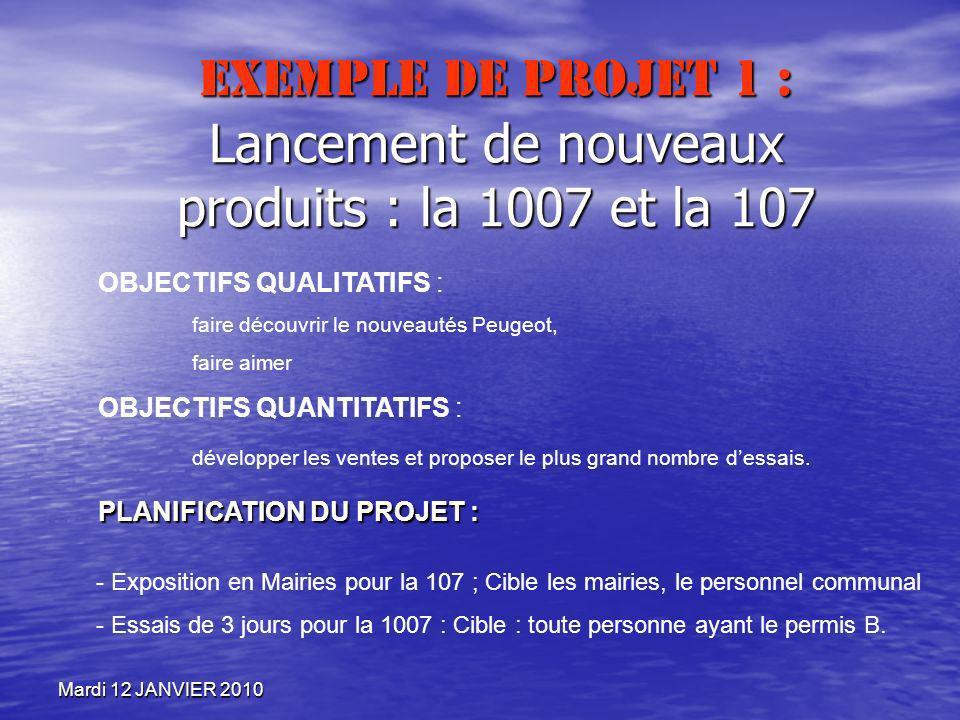 Exemple de projet 1 : Lancement de nouveaux produits : la 1007 et la 107