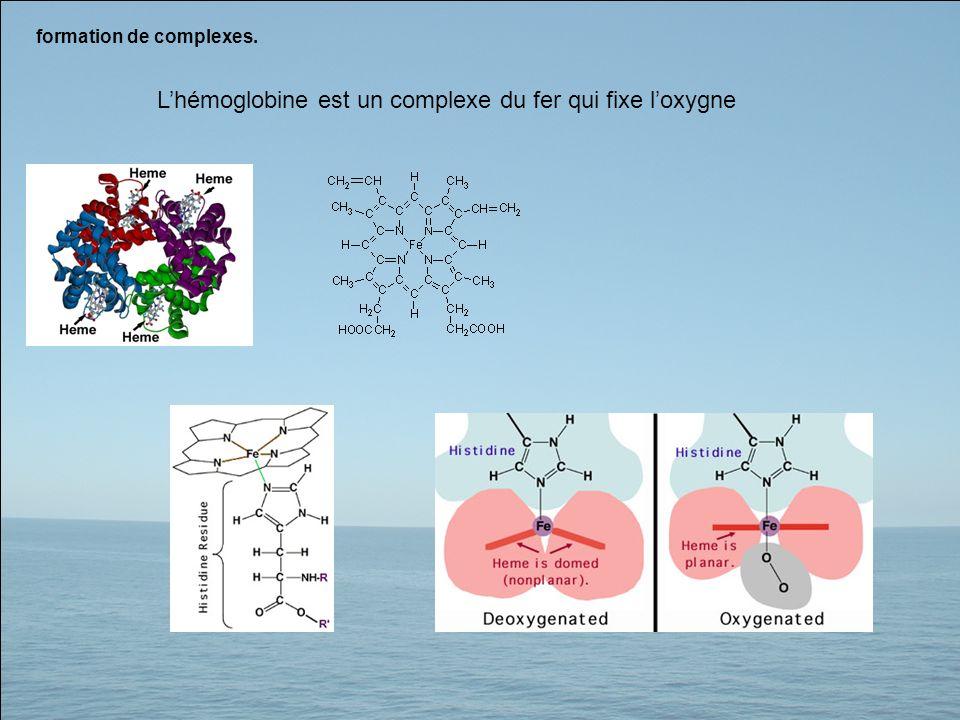 L'hémoglobine est un complexe du fer qui fixe l'oxygne