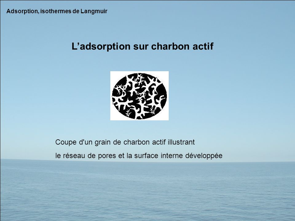 L'adsorption sur charbon actif