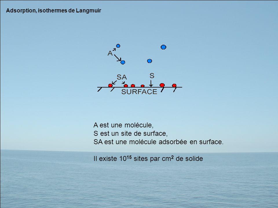 SA est une molécule adsorbée en surface.