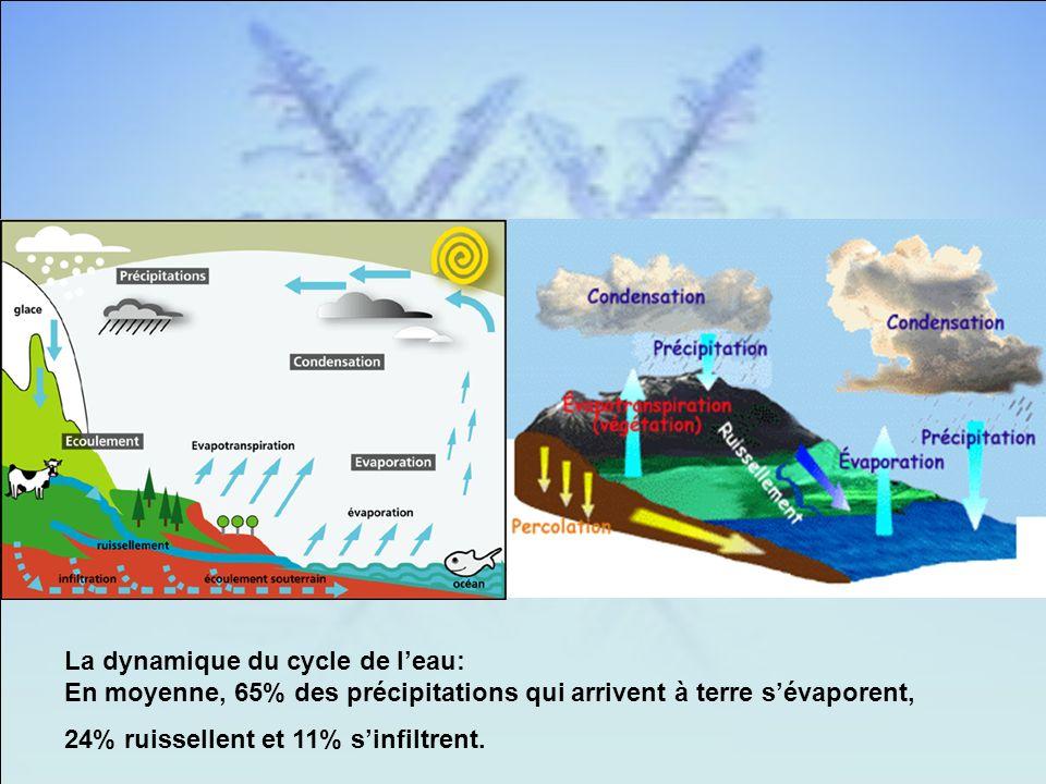 La dynamique du cycle de l'eau: En moyenne, 65% des précipitations qui arrivent à terre s'évaporent,