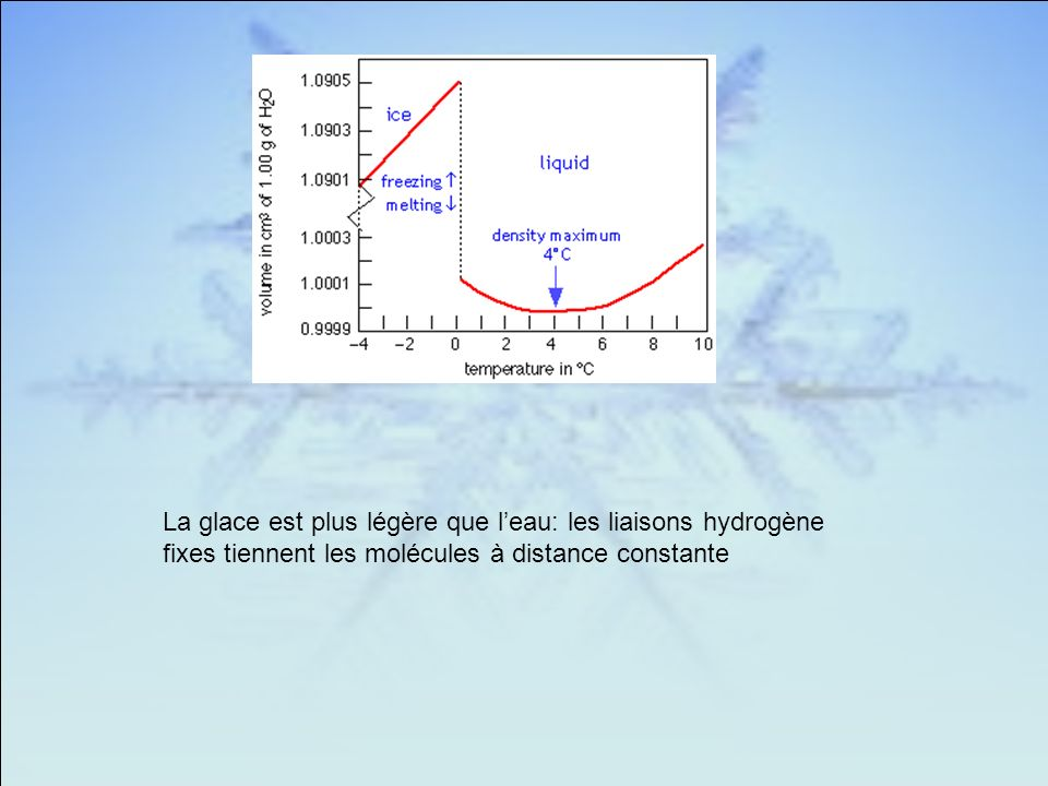 La glace est plus légère que l'eau: les liaisons hydrogène fixes tiennent les molécules à distance constante