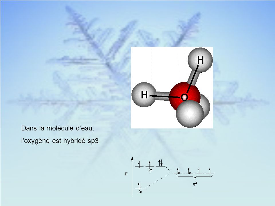 Dans la molécule d'eau, l'oxygène est hybridé sp3