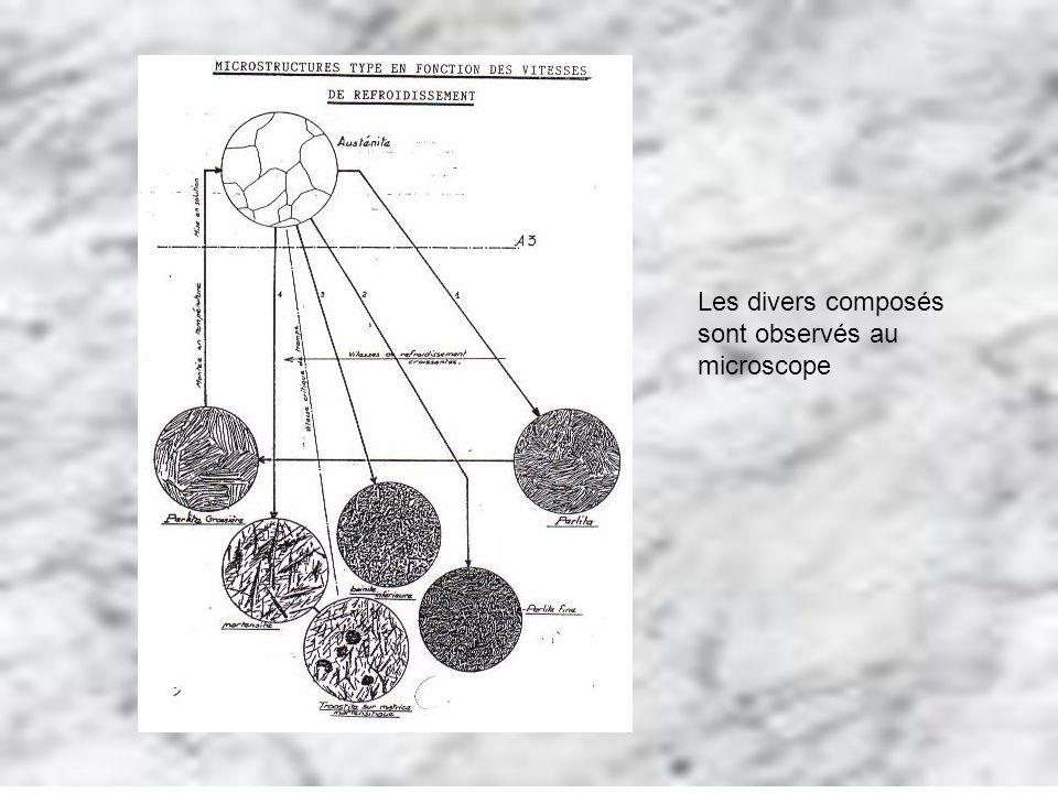 Les divers composés sont observés au microscope
