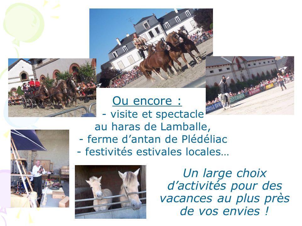 Ou encore : - visite et spectacle au haras de Lamballe, - ferme d'antan de Plédéliac - festivités estivales locales…