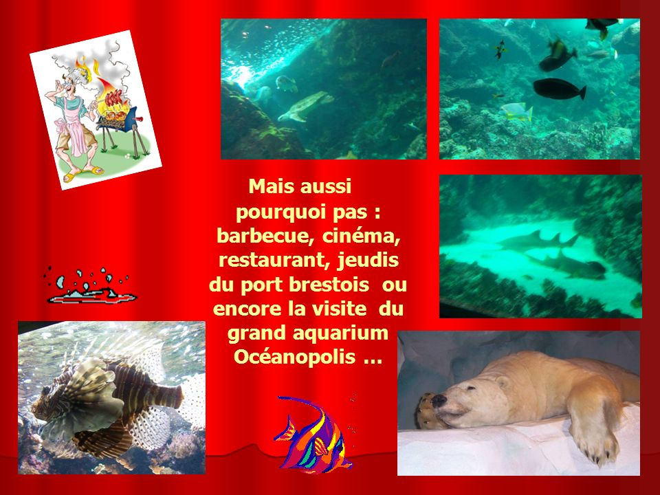 Mais aussi pourquoi pas : barbecue, cinéma, restaurant, jeudis du port brestois ou encore la visite du grand aquarium Océanopolis …