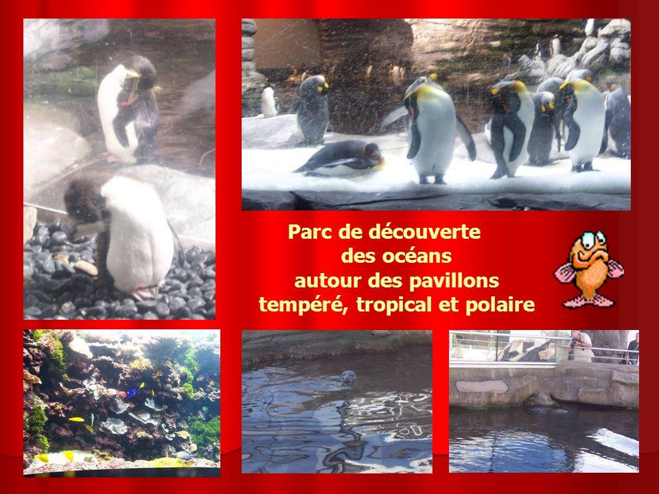 Parc de découverte des océans autour des pavillons tempéré, tropical et polaire