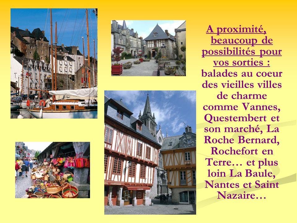 A proximité, beaucoup de possibilités pour vos sorties : balades au coeur des vieilles villes de charme comme Vannes, Questembert et son marché, La Roche Bernard, Rochefort en Terre… et plus loin La Baule, Nantes et Saint Nazaire…