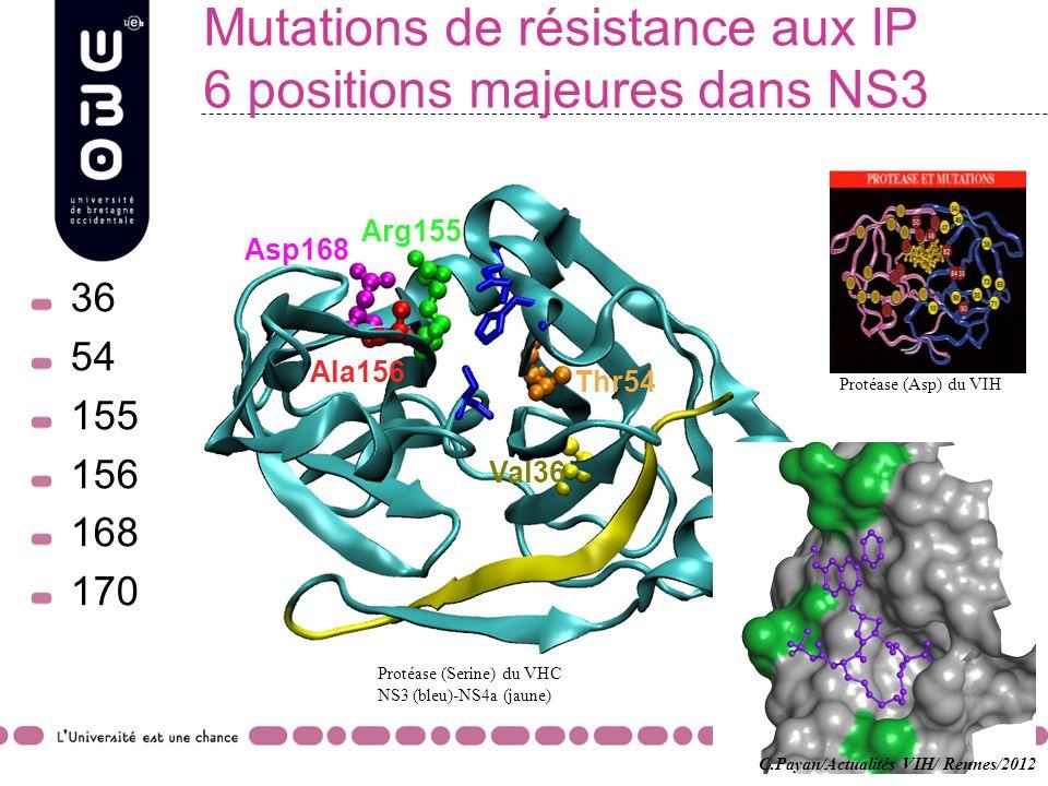 Mutations de résistance aux IP 6 positions majeures dans NS3