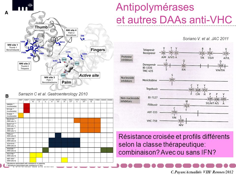 Antipolymérases et autres DAAs anti-VHC