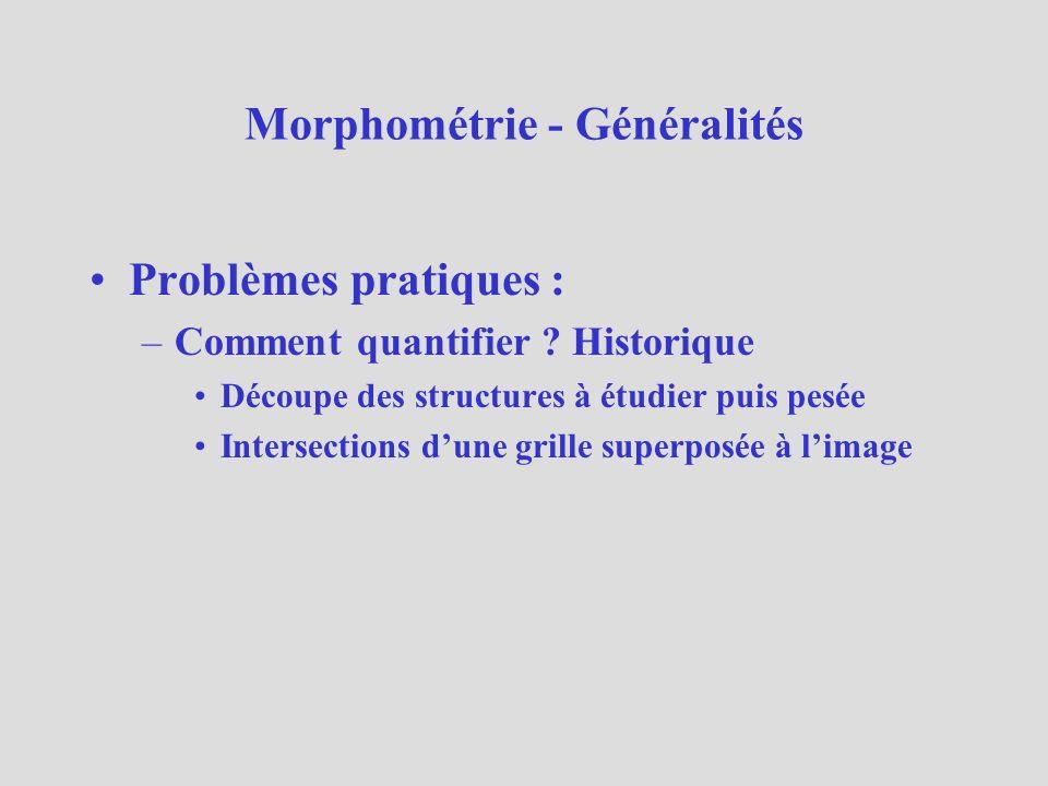 Morphométrie - Généralités