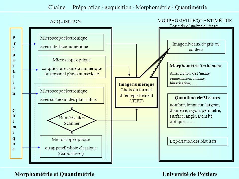 Quantimétrie/Mesures