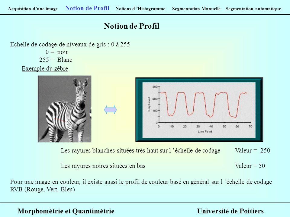 Notion de Profil Morphométrie et Quantimétrie Université de Poitiers