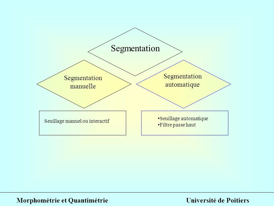 Segmentation automatique manuelle