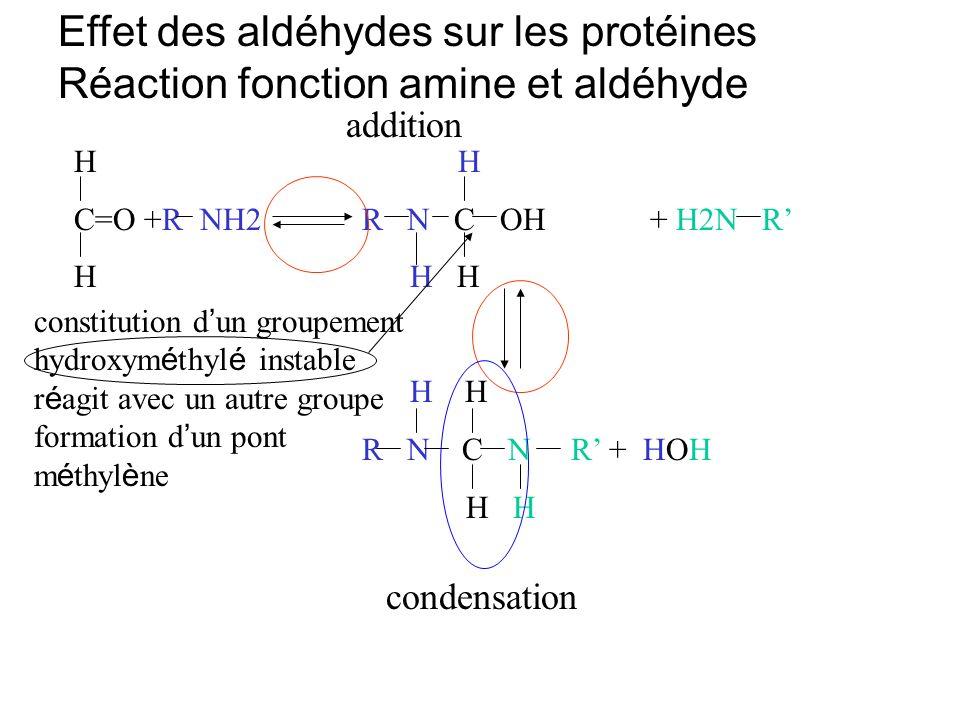 Effet des aldéhydes sur les protéines