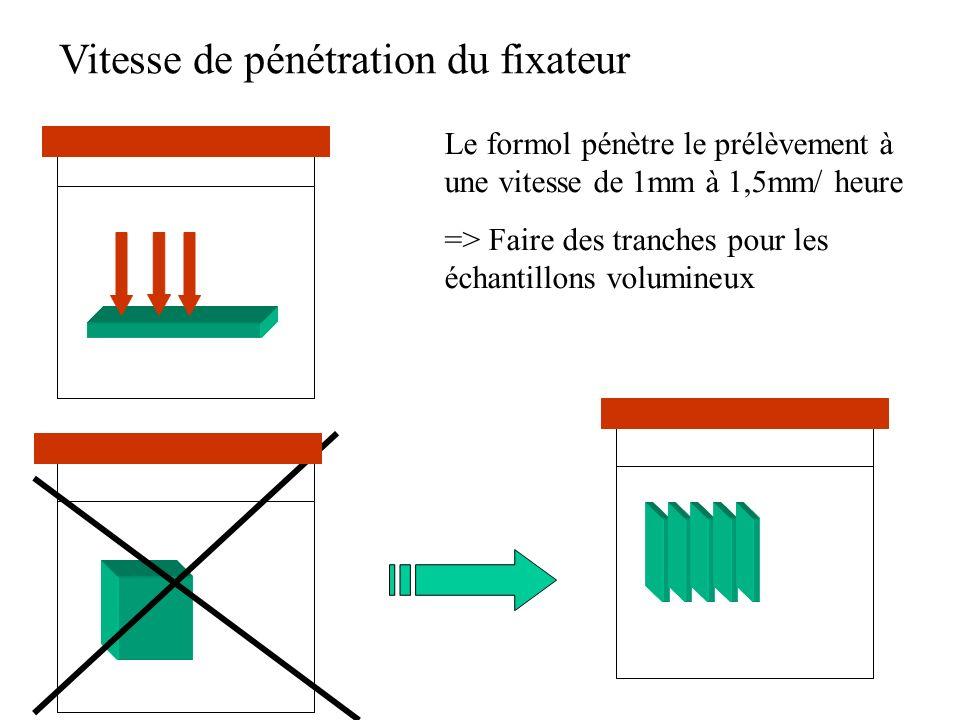 Vitesse de pénétration du fixateur